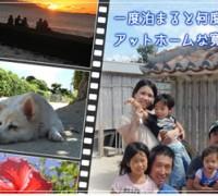 竹富町商工会 会員 小浜荘のエキスパート活用術